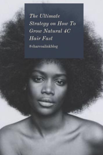 4c hair afro model